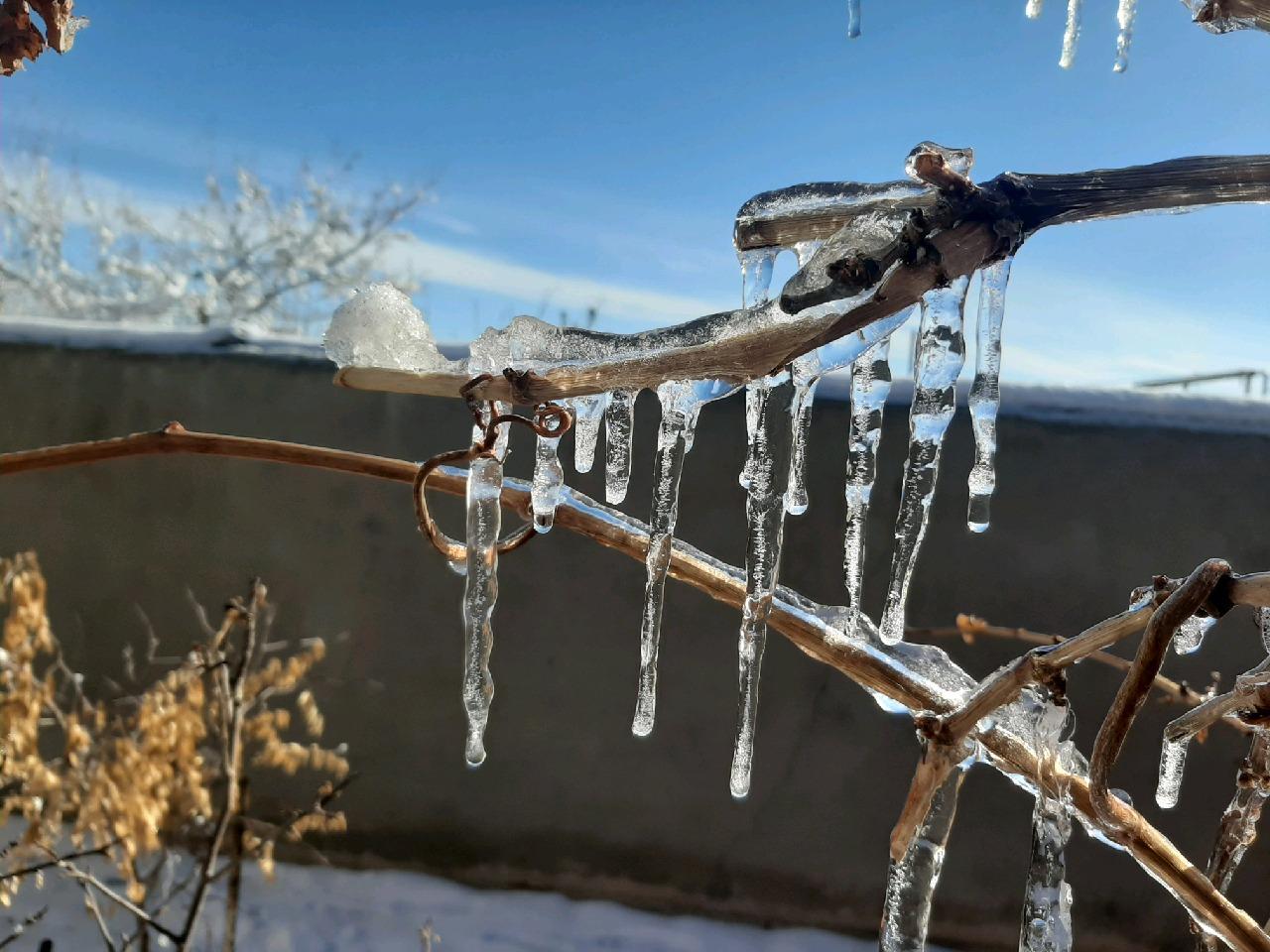 تشدید یخبندان در خراسان جنوبی، تا چهارشنبه
