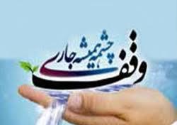 وقف یک فنجان آب بلده در شهرستان فردوس