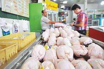 آغاز توزیع ۱۵تن گوشت منجمد مرغ
