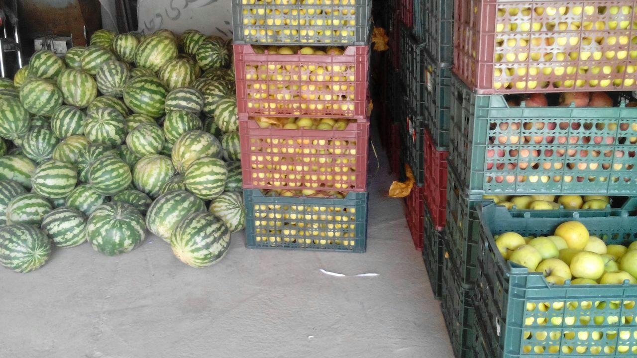 توزیع سیب و هندوانه بین مددجویان زیرپوشش بهزیستی سربیشه