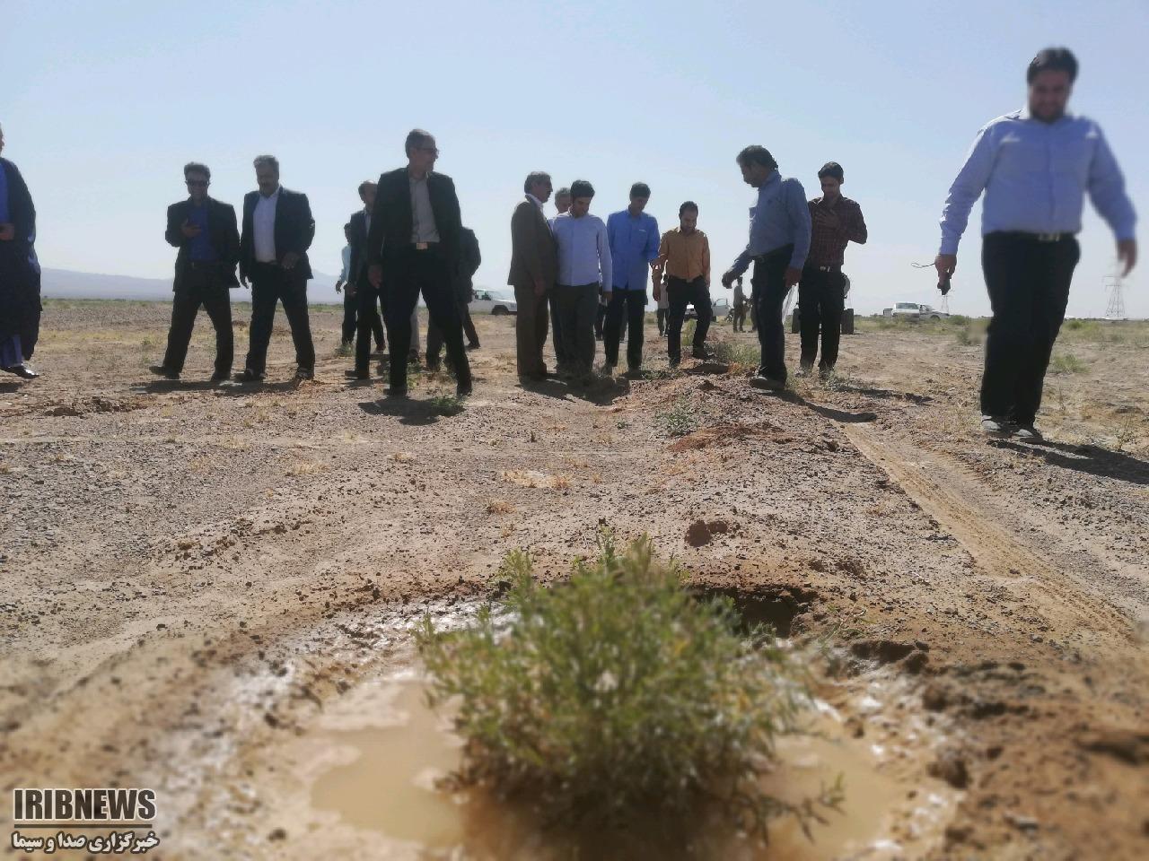 افتتاح طرح بوته کاری مراتع آیسک به مساحت ۶٠هکتار