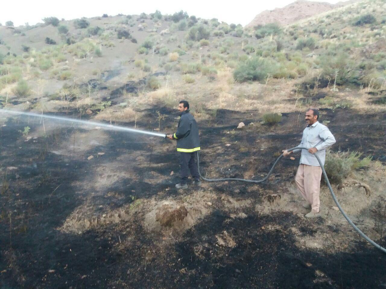 مهار آتش سوزی در مراتع خضری دشت بیاض
