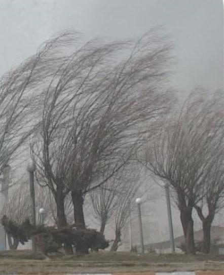 پیش بینی وزش تند باد و گردوخاک در خراسان جنوبی