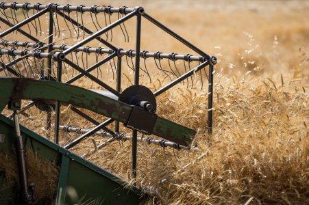 برداشت غلات در خراسان جنوبی با کمک 109 دستگاه