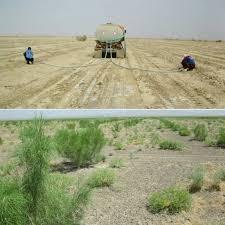 آبیاری 3500 هکتار از اراضی بیابانی خراسان جنوبی