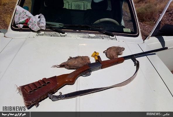 دستگیری دو شکارچی متخلف در قاین