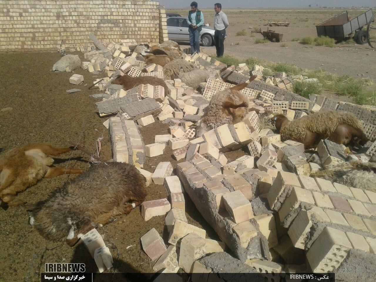 خسارت طوفان در خراسان جنوبی