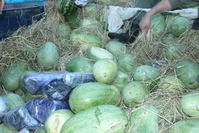 جاساز مواد مخدر در بار هندوانه