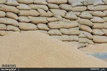 کشف ۱۵تن گندم احتکارشده در شهرستان خوسف