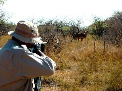 زخمی شدن محیط بان در درگیری با شکارچی متخلف
