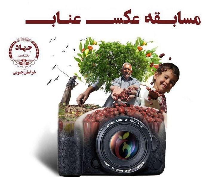 معرفی برگزیدگان مسابقه کشوری عناب