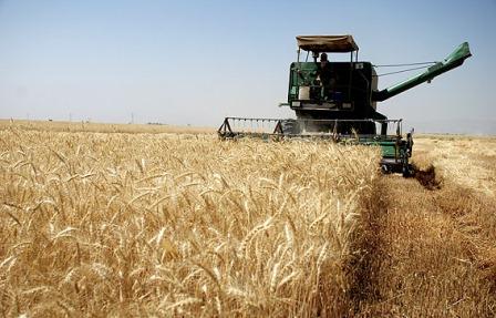 اختصاص 19 میلیارد ریال تسهیلات به نوسازی ناوگان کشاورزی