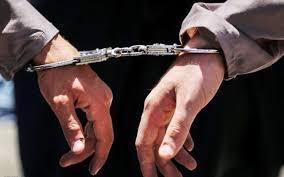 دستگیری سارقان سابقه دار در بیرجند