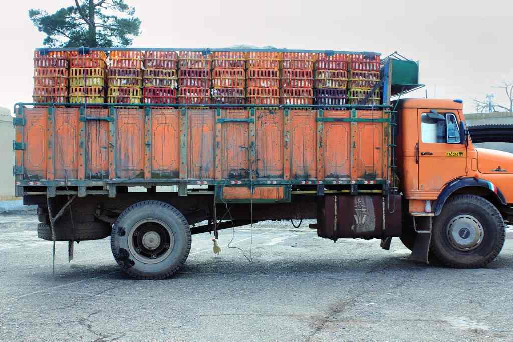 توقیف کامیون حامل مرغ تخمگذار در قاین