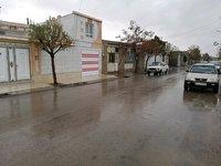 بیشترین بارش باران بهاری در پیرحاجات طبس