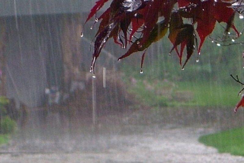 آلنگ و سرند با ۱۱ میلی متر بیشترین بارندگی در ۲۴ ساعت گذشته