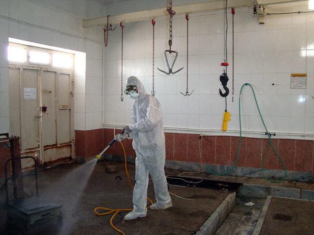 هشدار دامپزشکی برای پیشگیری از بیماری تب خونریزی دهنده کریمه-کنگو
