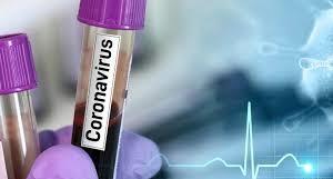 تفکیک آمار مبتلایان به ویروس کرونا در خراسان جنوبی