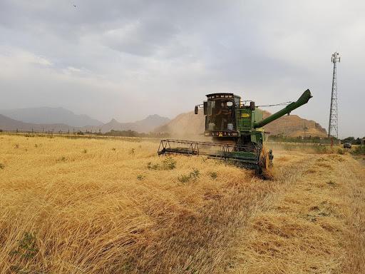 تولید ۱۱۸ تن محصول کشاورزی با تلاش زندانیان