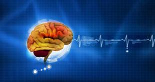 مرکز خدمات تخصصی روانشناسی به روان در بیرجند راه اندازی می شود